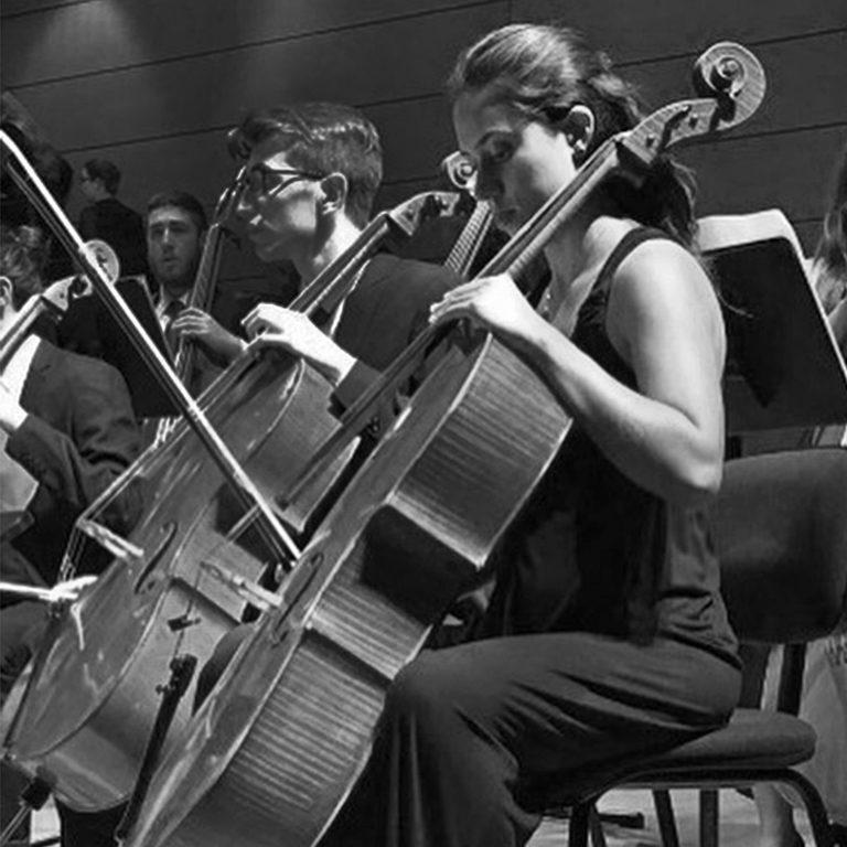 Insegnante Violoncello Cascina