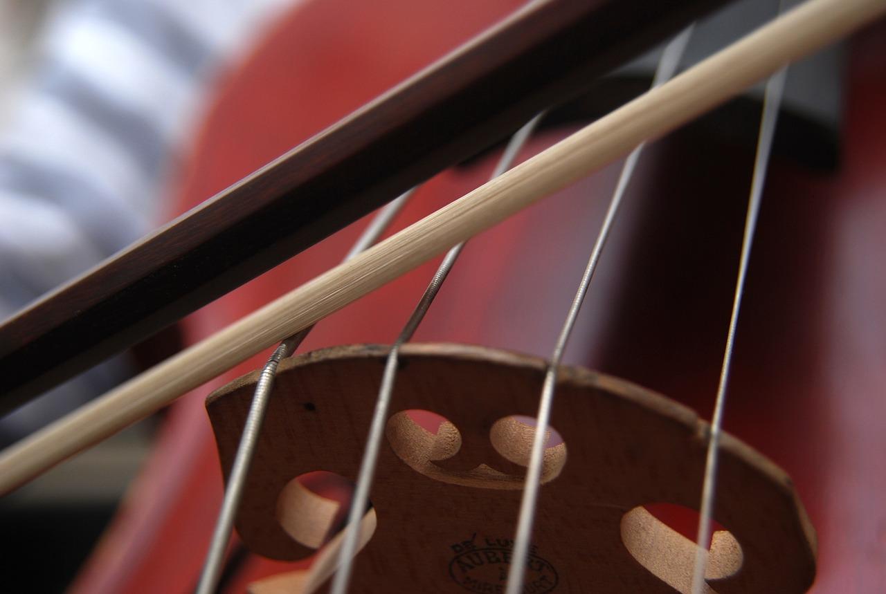 Lezioni di violoncello a Cascina